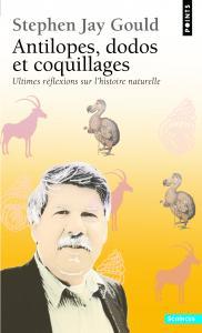 Antilopes, dodos et coquillages