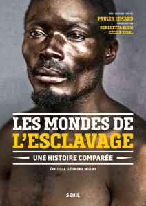 Couverture de l'ouvrage Les Mondes de l'esclavage
