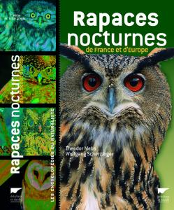 Rapaces nocturnes de France et d'Europe