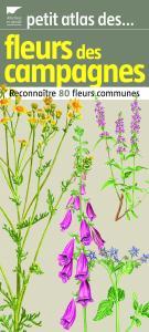 Petit atlas des fleurs des campagnes