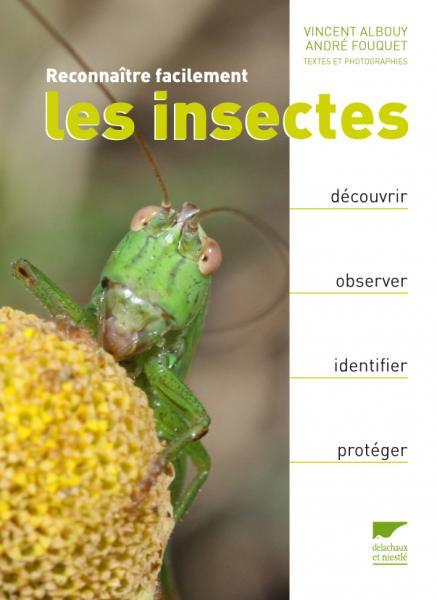 Reconnaître facilement les insectes
