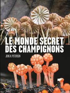 Le Monde secret des champignons
