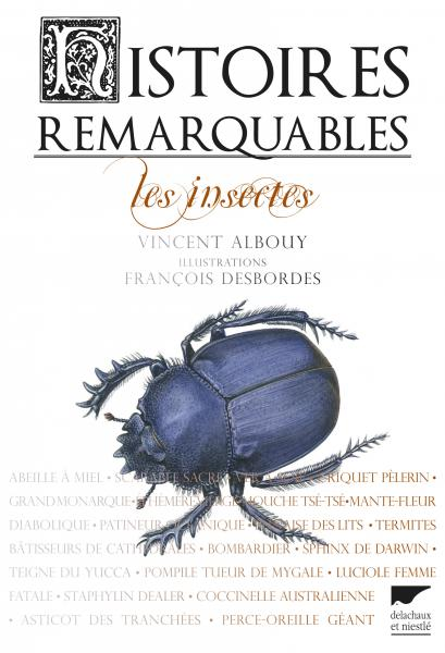 Histoires remarquables. Les insectes