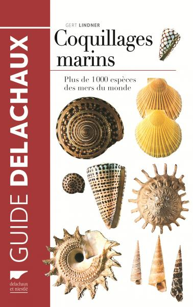 Coquillages marins
