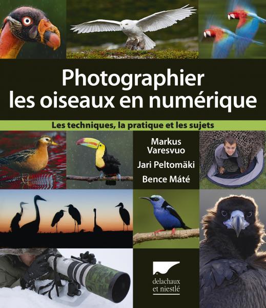 Photographier les oiseaux en numérique