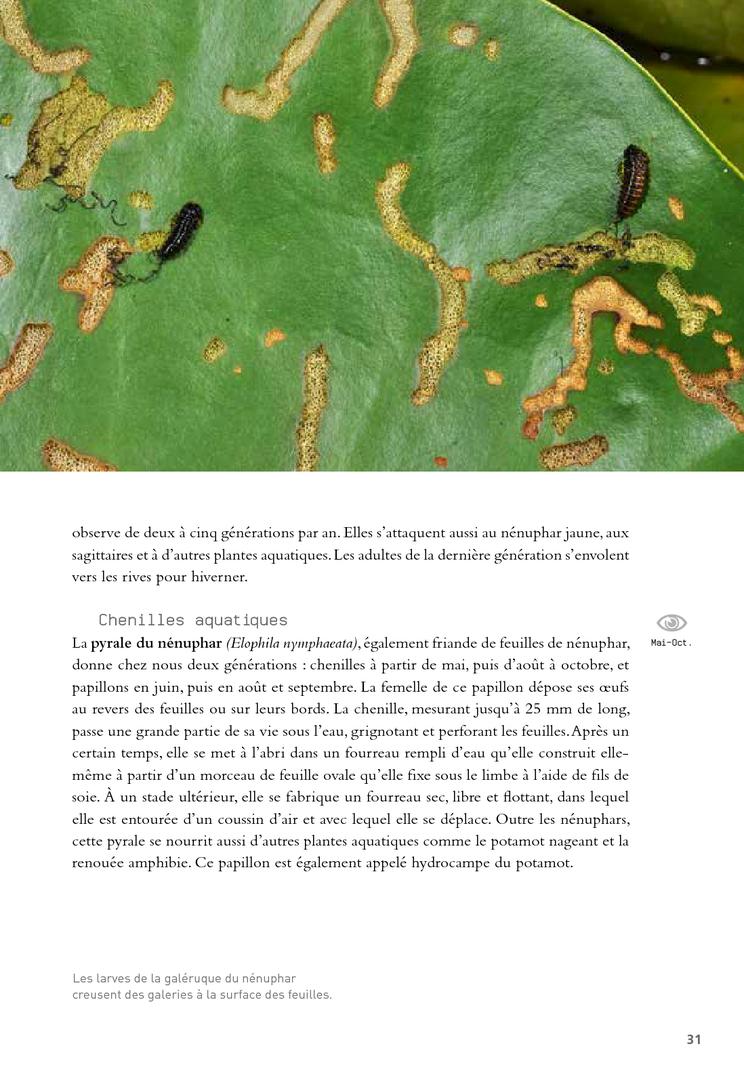 http://ref.lamartinieregroupe.com/media/9782603024195/widget/4.jpg
