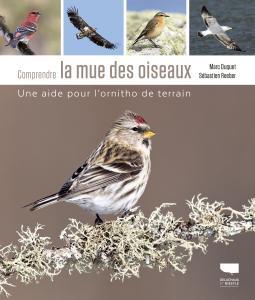 Comprendre la mue des oiseaux