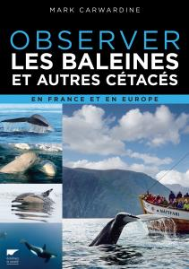 Observer les baleines et autres cétacés