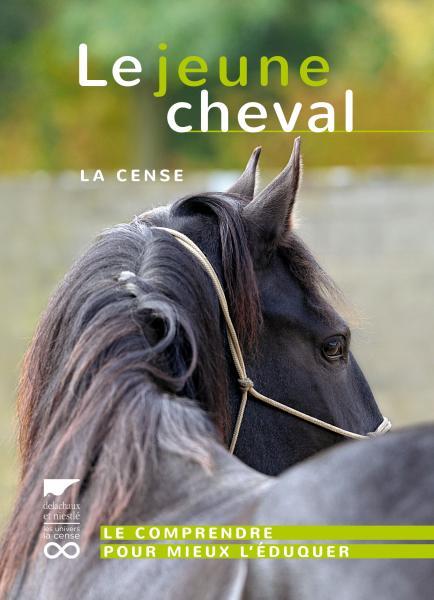 Le Jeune cheval