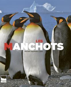 Les Manchots