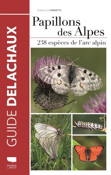 Papillons des Alpes