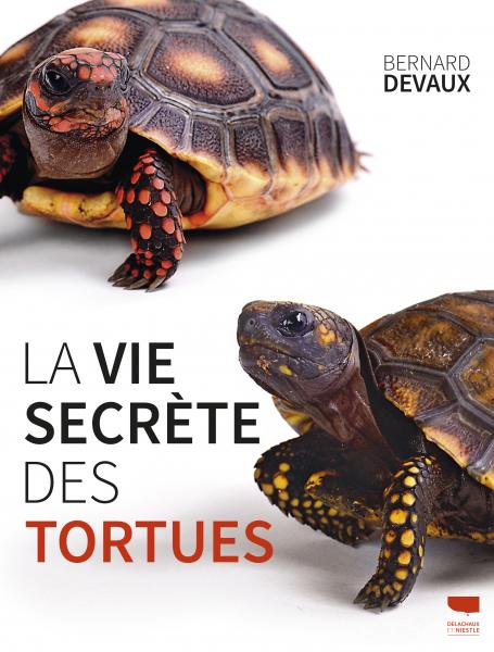 La Vie secrète des tortues