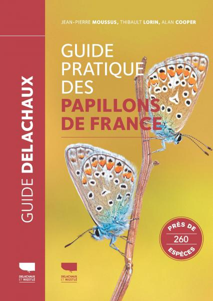 Guide pratique des papillons de France