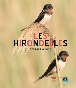Les Hirondelles