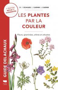 Plantes par la couleur