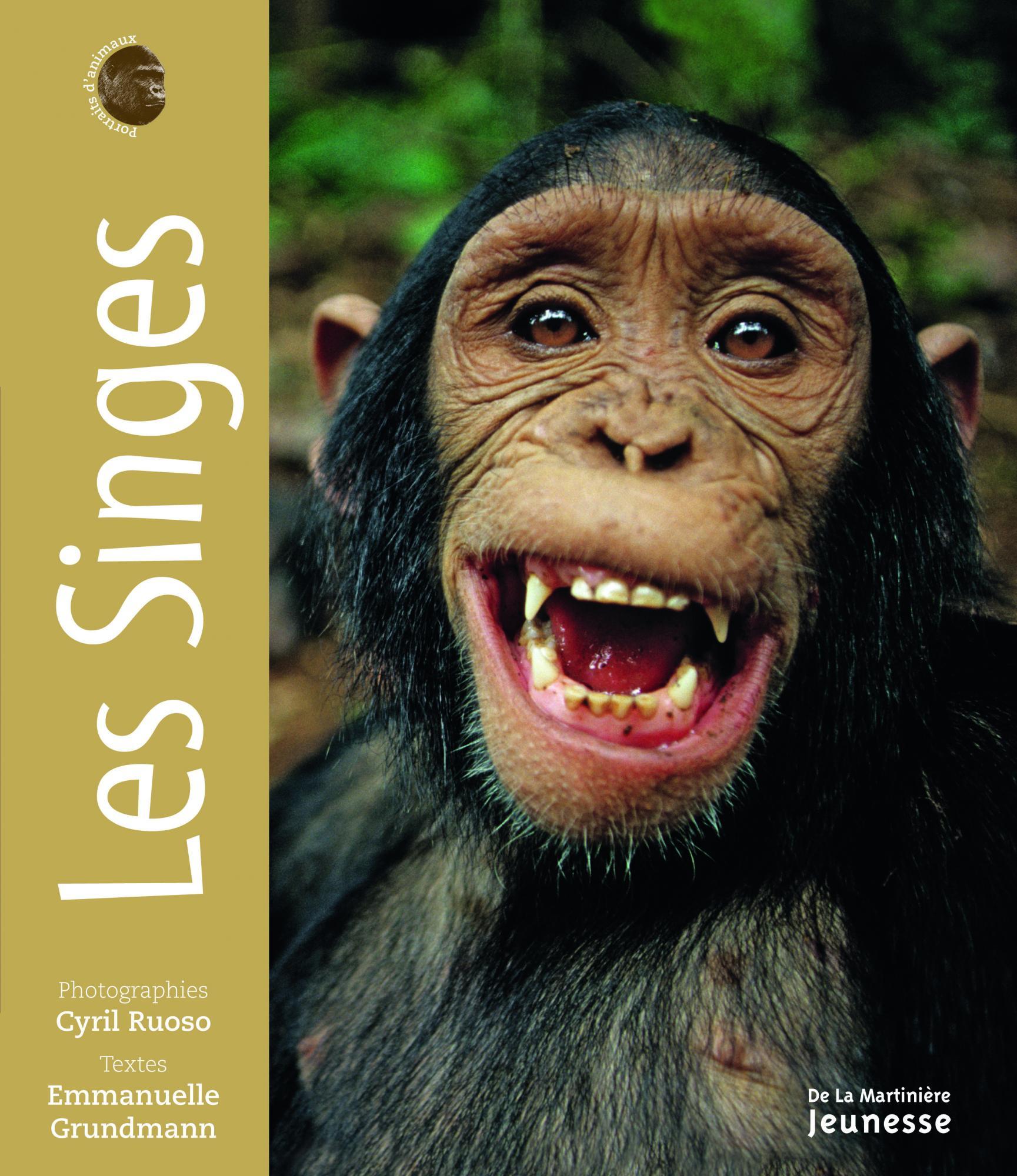 Les Singes - Emmanuelle Grundmann | Editions de La