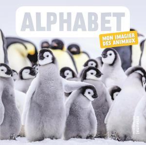 Couverture de l'ouvrage Alphabet