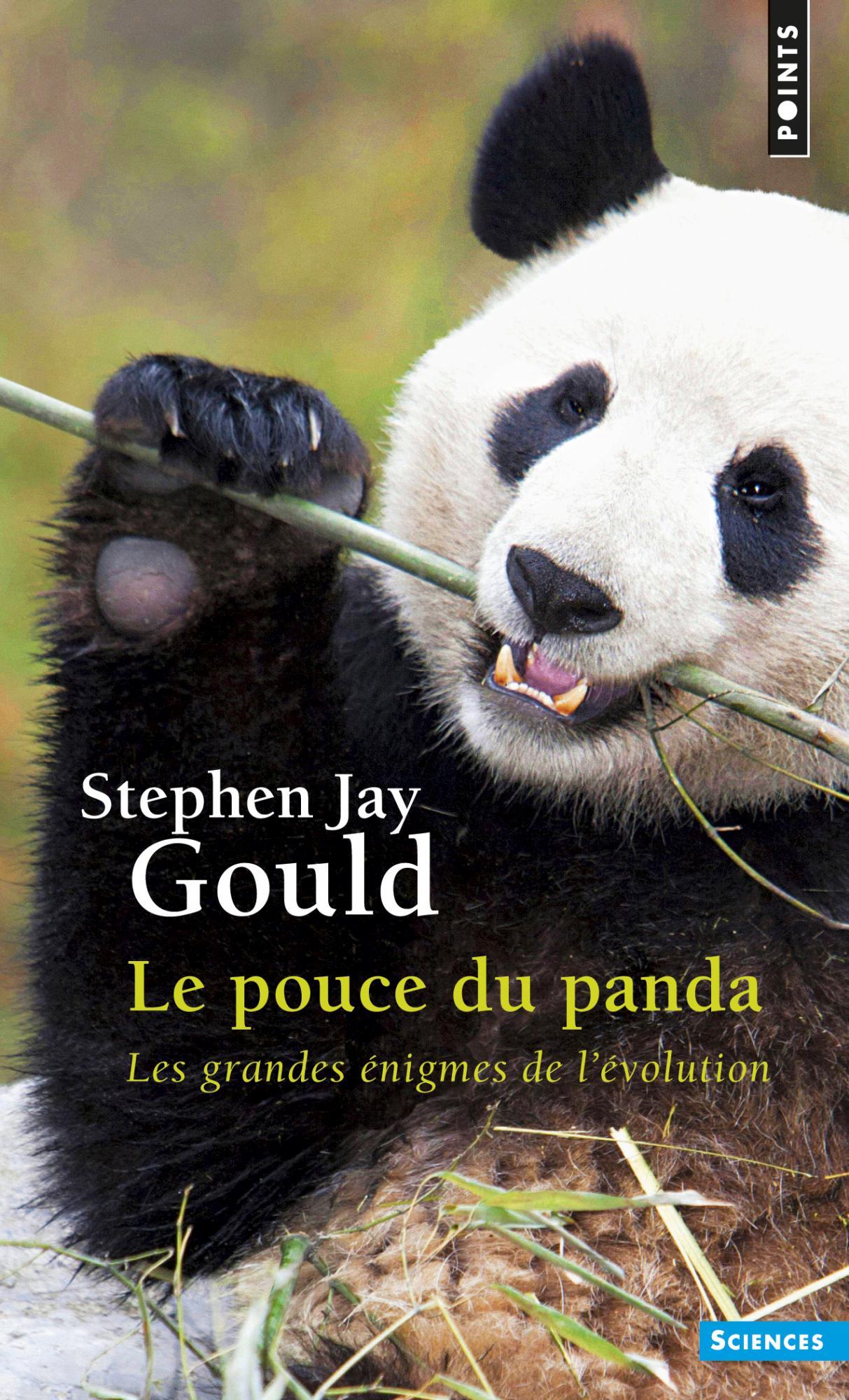 Stephen Gould Panda Daumen