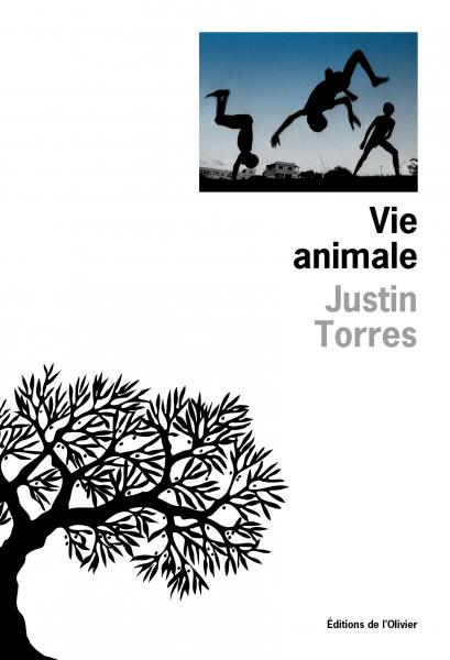 Vie animale