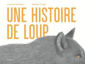Couverture de l'ouvrage Une histoire de loup